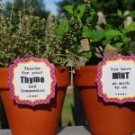 plantthankyoulabelsmintthymeherbs 150x150 Crafts