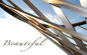 Reclaiming The Beauty