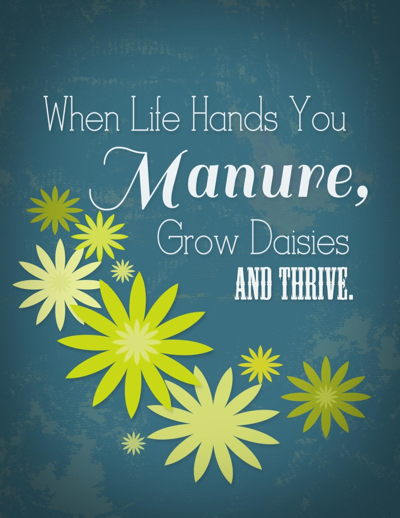 whenlifehandsyoumanure 791x1024 When Life Hands You Manure (free printable)