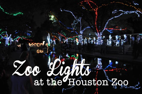 Zoo Lights gorgeous holiday lights at the Houston Zoo Zoo Lights at the Houston Zoo