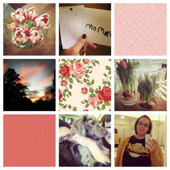 instagram dump
