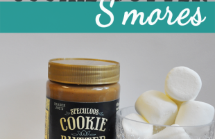 Trader Joe's Cookie Butter S'mores