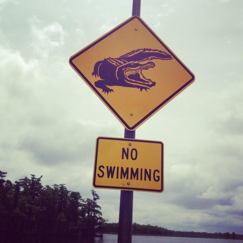 No Swimming - Alligators