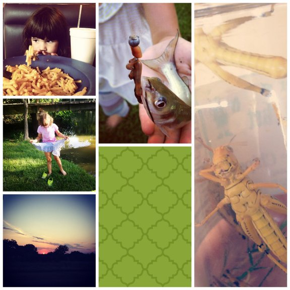 July Collage 2