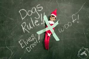 Elf On The Shelf – 7 Ideas for That Pesky Elf