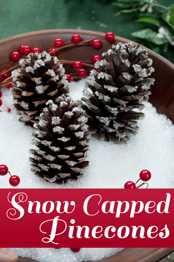 Faux snow capped Pinecones - an easy 10 minute project.