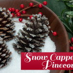 Snow Capped Pinecones using epsom salt by Clumsy Crafter 150x150 Crafts