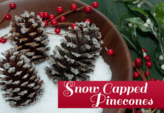 Faux Snow Capped Pinecones by Clumsy Crafter - Easy and takes less than 10 minutes!