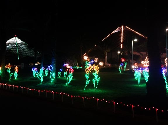 Moody Gardens festival of lights review