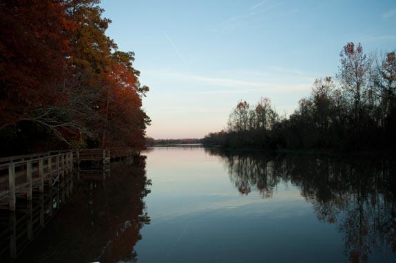 kingwood in fall