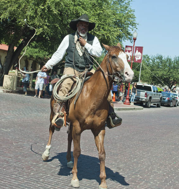 cowboy at the stock yards