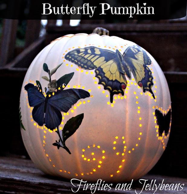 Butterfly Pumpkin 1