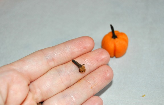 Using a clove as a pumpkin stem