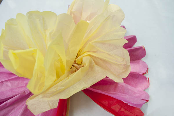 Tissue paper flowers for cinco de mayo