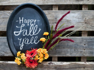 Fall Chalkboard – Make this for less than $10!
