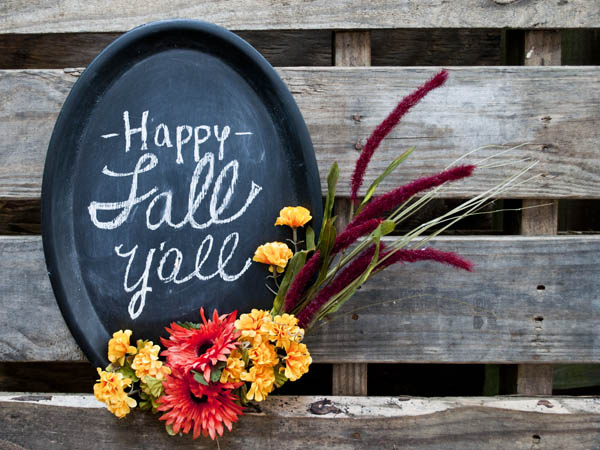 Easy Fall Decoration - dollar store crafts from Clumsy Crafter