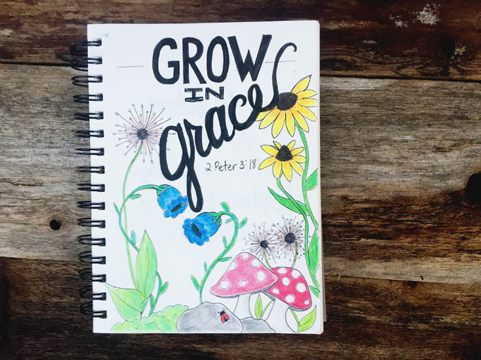 Grow In Grace - Illustrated Faith
