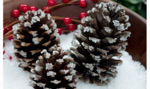 Snowy Pinecones Using Epsom Salt!