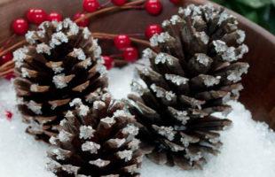 Snowy Pinecones Using Epsom Salt!