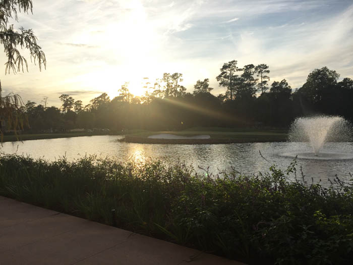 review of the woodlands resort