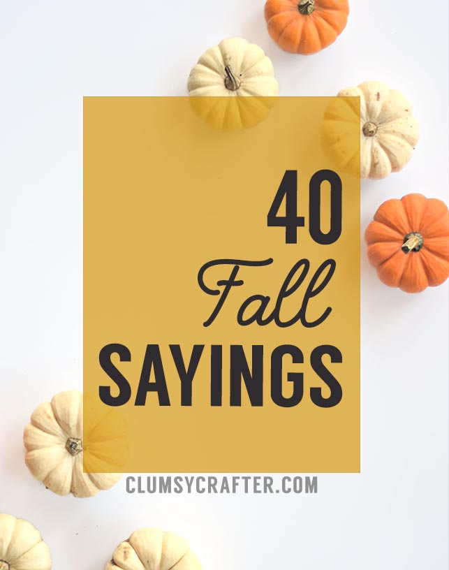 40 Fall Sayings - Perfect sayings for fall crafts or DIY Projects