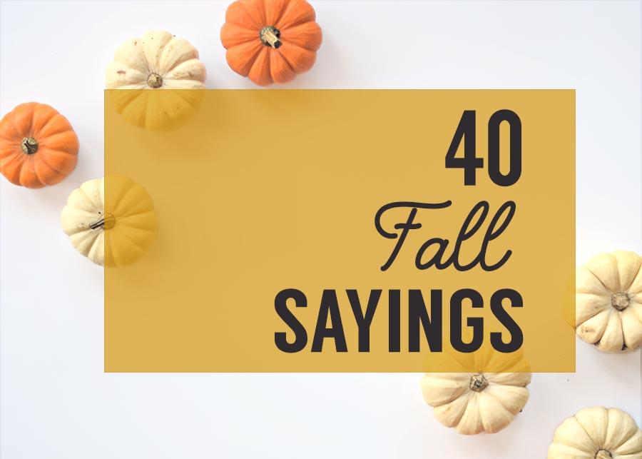 40 fall sayings