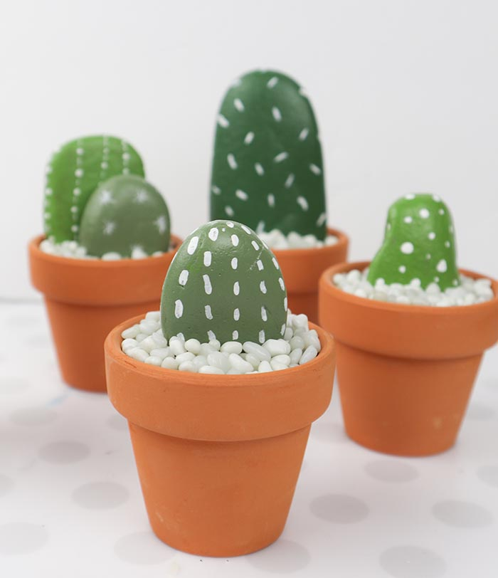Rock Cactus Garden - Easy and Fun DIY Project - Clumsy Crafter