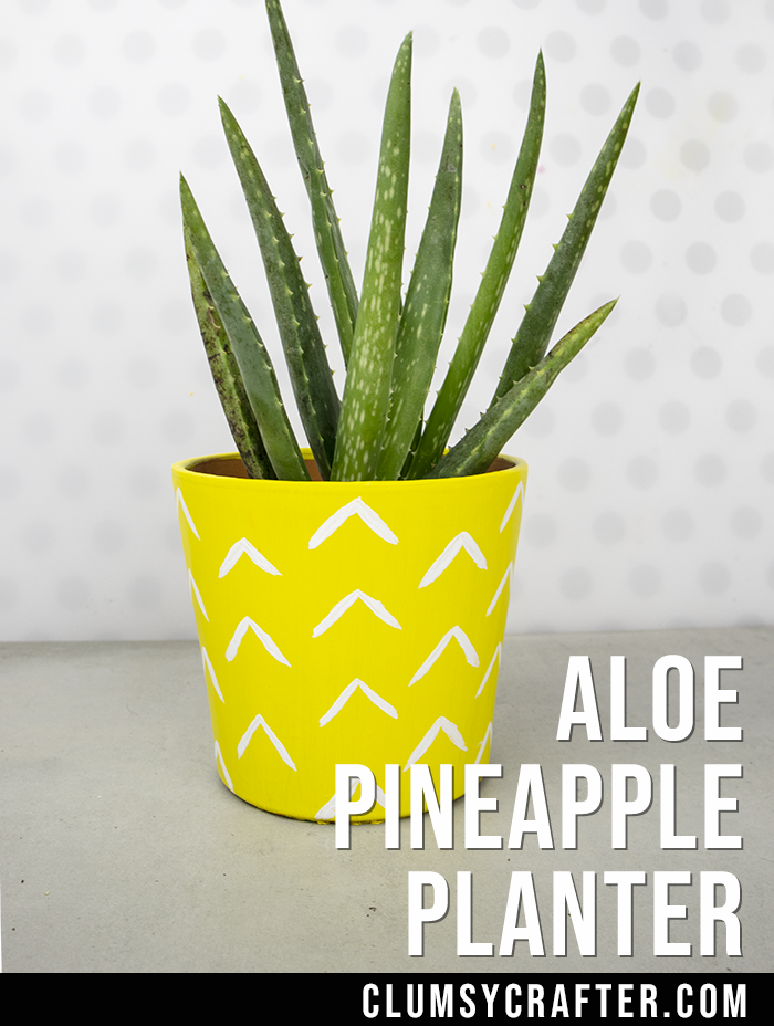 DIY Aloe Pineapple Pot