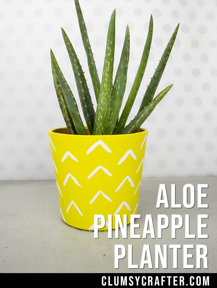 DIY Aloe Pineapple Pot