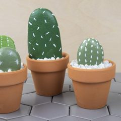 Rock Cactus Garden – Easy and Fun DIY Project