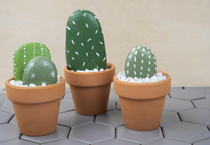 Easy Teen Craft - Rock Cactus Garden